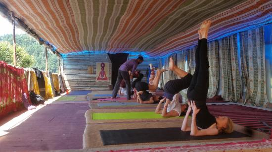 Find A Yoga Expert