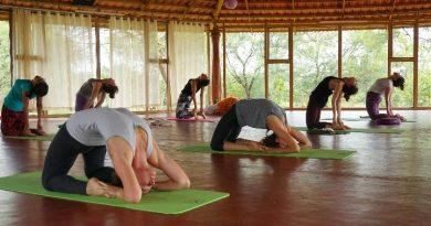 Yoga Alliance Certified Schools