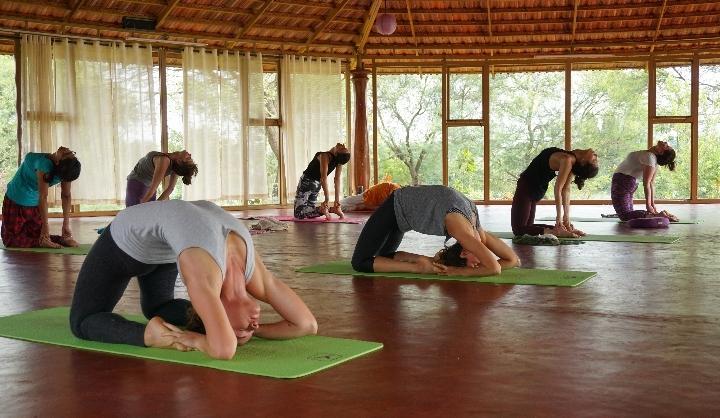 Top 5 Yoga Studios in Rishikesh